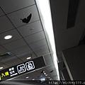 2011松山機場入境新貌~好多蝴蝶啊 (1).JPG