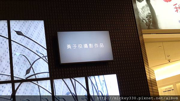 2011 PHOTO TAIPEI名人公益攝影展在市府轉運站預展輪播中 (3).JPG