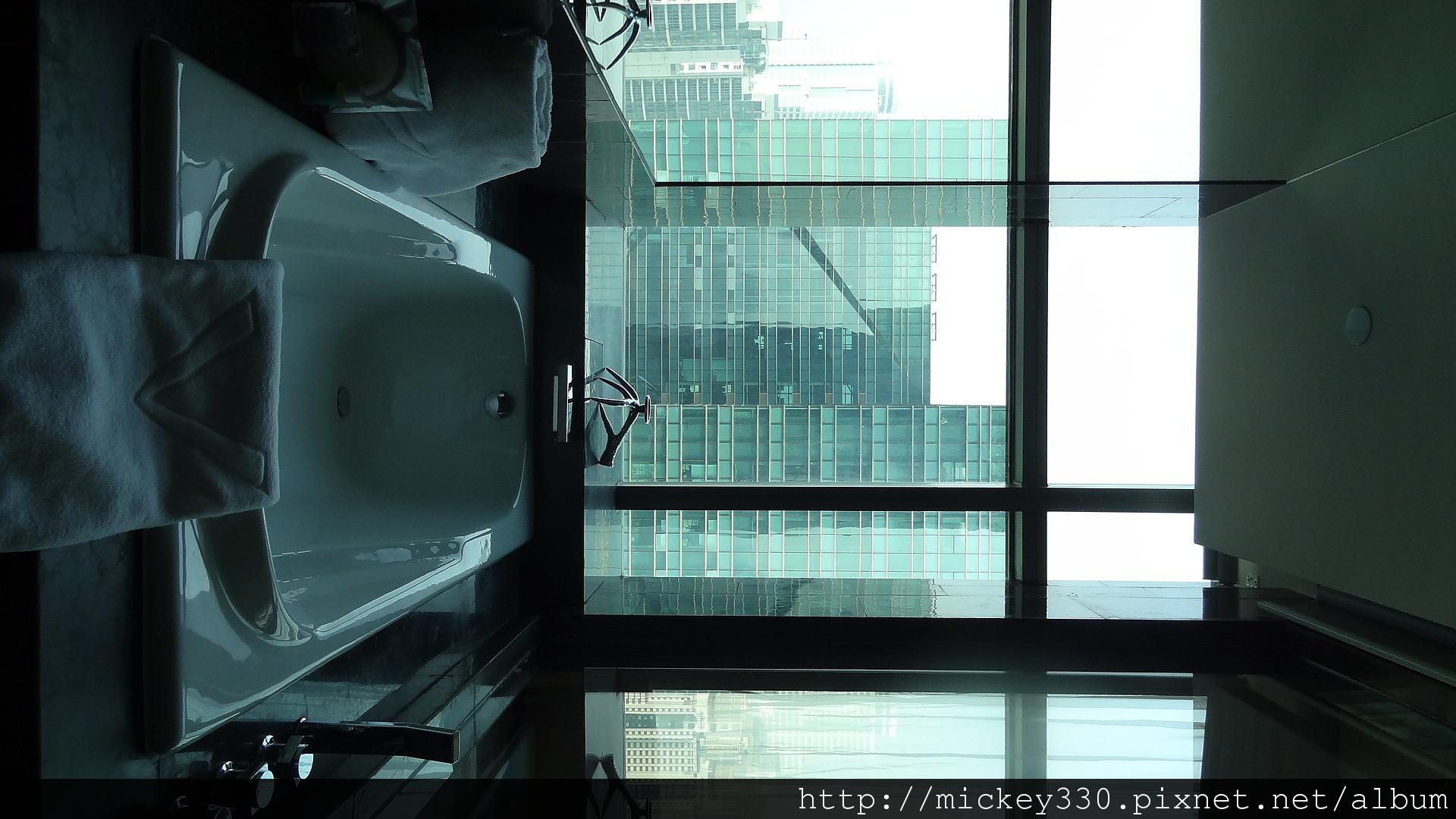 2011 深圳皇庭V酒店 (20).JPG