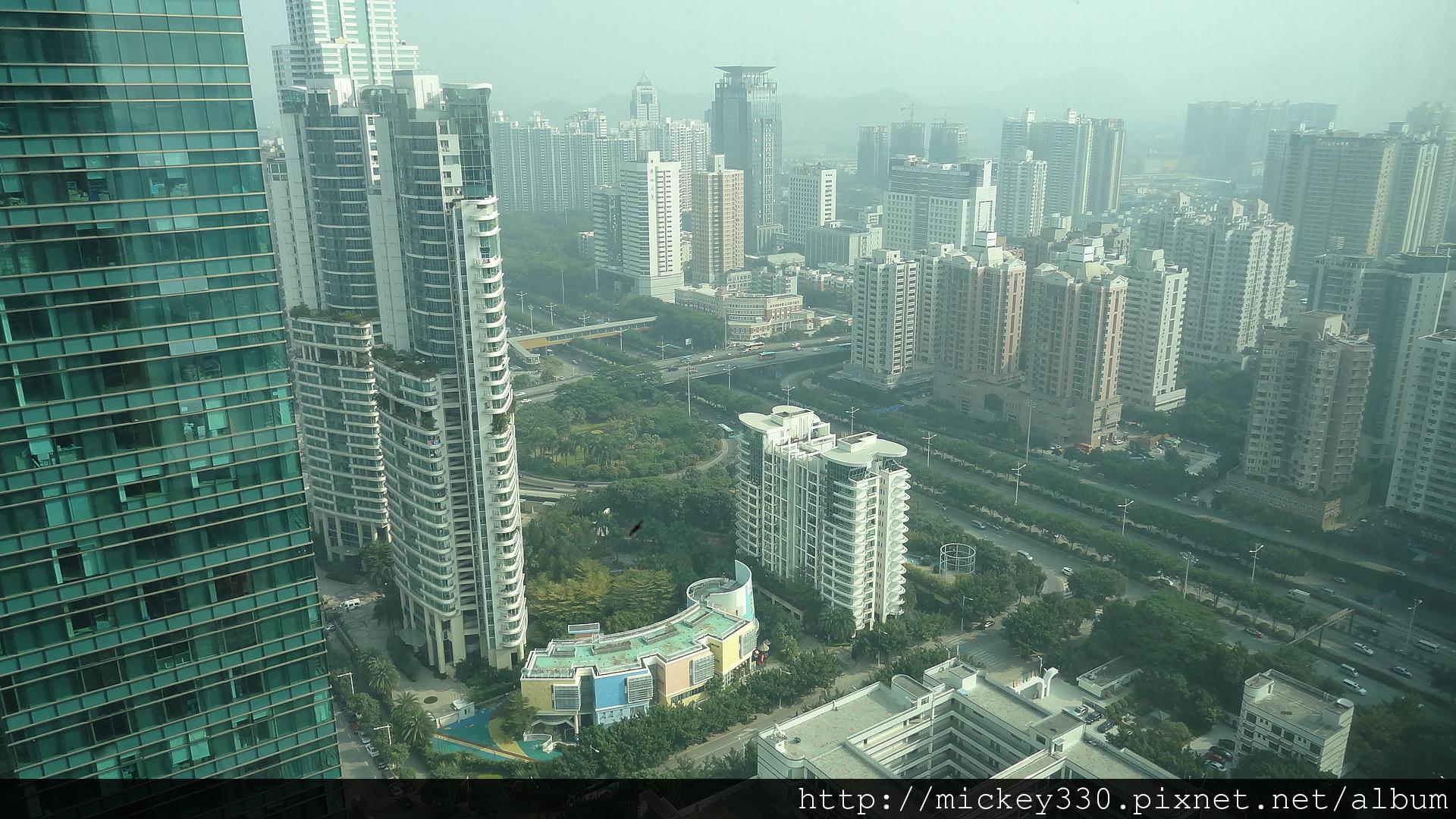 2011 深圳皇庭V酒店 (14).JPG