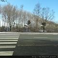 2012 2 15哈爾濱隨手拍 (4).JPG