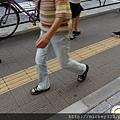 2012 725東京第一天~下午兩點從飯店出來到新宿開逛開吃~悠閒在路邊拍一堆鴿子圖 (4)