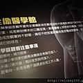 2012 818松山文創園區看奇幻魅影展 (42)