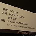 2012 818松山文創園區看奇幻魅影展 (44)