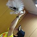 2012 929高雄台灣設計展年度主題館之候鳥彩繪活動 (4)