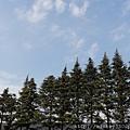 2013 3 在東京~用簡易型相機也努力拍出好照片 (4)