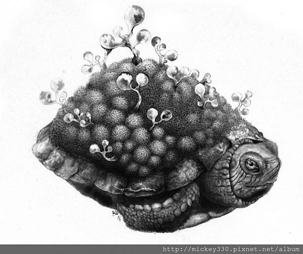 駱志豪 烏龜1號  水墨畫布  26.9cmx21.8cm