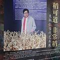 2013 3 24我在北京798看朱炳仁的銅製藝術品 (6)