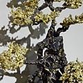 2013 3 24我在北京798看朱炳仁的銅製藝術品 (8)