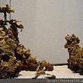2013 3 24我在北京798看朱炳仁的銅製藝術品 (22)