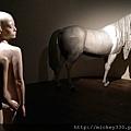 2013 7 台北當代藝術館~向京個展 (15)