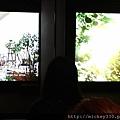 2013 7 台北當代藝術館~向京個展 (19)