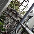 2013 7 26台中自由人藝術公寓~從老公寓空間到展覽到出租房與公共空間我都很喜歡www.facebook (26).JPG