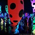 2013 7 31 森美術館love聯展~只有部份展品可拍~與樓下販店旁新銳藝術家小聯展 (12).JPG