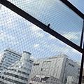 2014 5 17    大阪~心齋橋NIKKO HOTEL往南船場一帶再返NIKKO日航酒店周邊 (60)