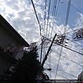 2014 6 13東京 (18)