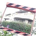 2014 6 13東京 (35)