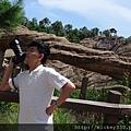 2014 8 28 香港迪士尼創作拍照 與 棚內主視覺拍攝工作 (4)