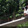 2014 8 28 香港迪士尼創作拍照 與 棚內主視覺拍攝工作 (19)
