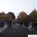 2014 11 28-29 @ 東京 (169)