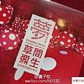 2015 6 夢我所夢 台中國美館 (19)