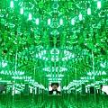 2015 6 夢我所夢 台中國美館 (6)