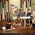 2017 8 22 呵護寵物設計打造舒適生活-賴奕勳 林伯鴻 (2)