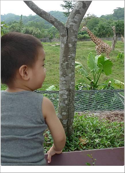 zoo-40.jpg