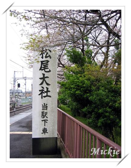 05前往嵐山-松尾大社-1.JPG