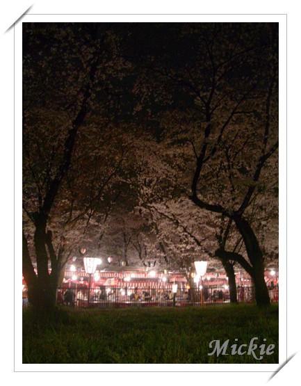 平野神社-4