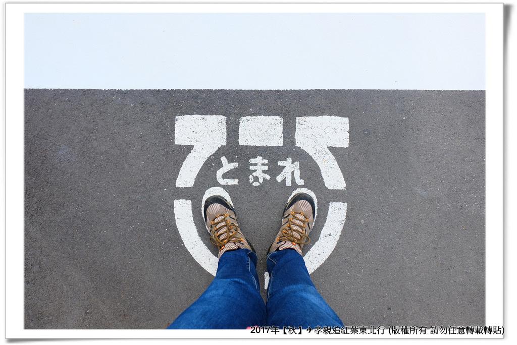 飛不動尊-002