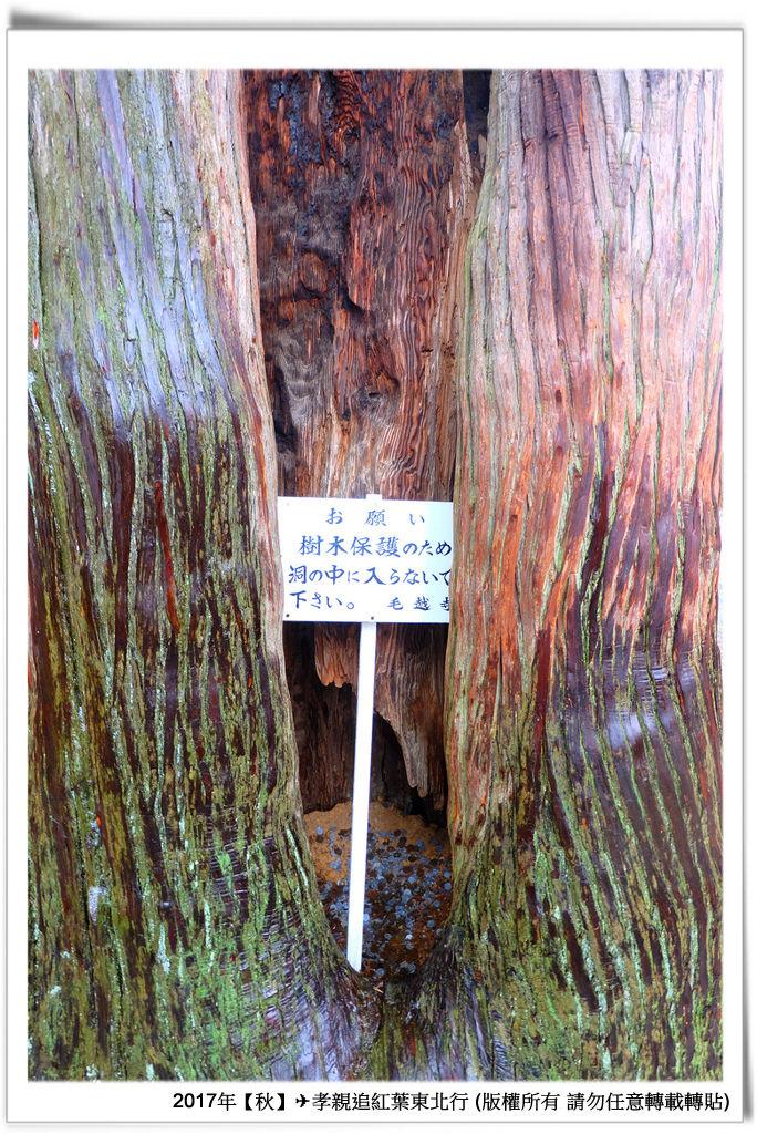 毛越寺-019