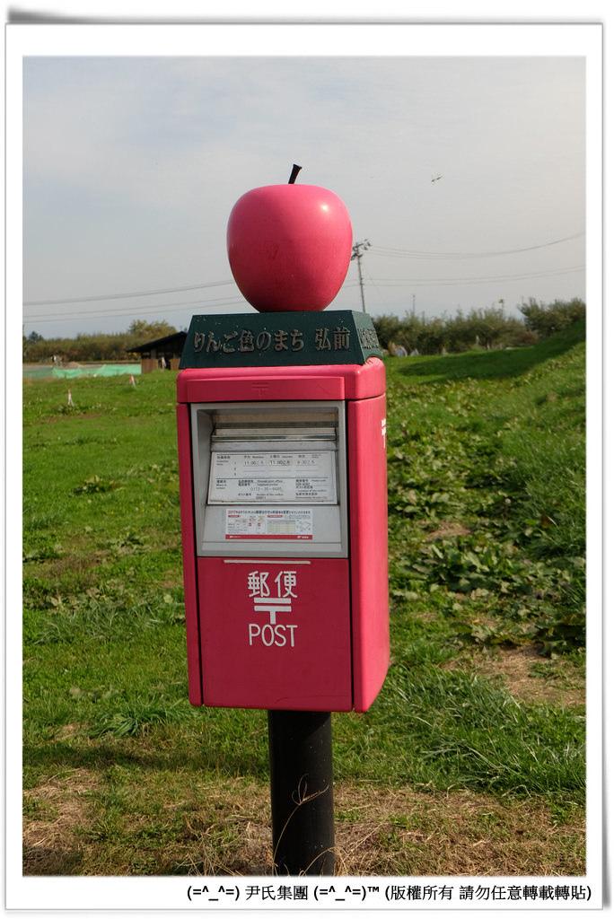 りんご-020