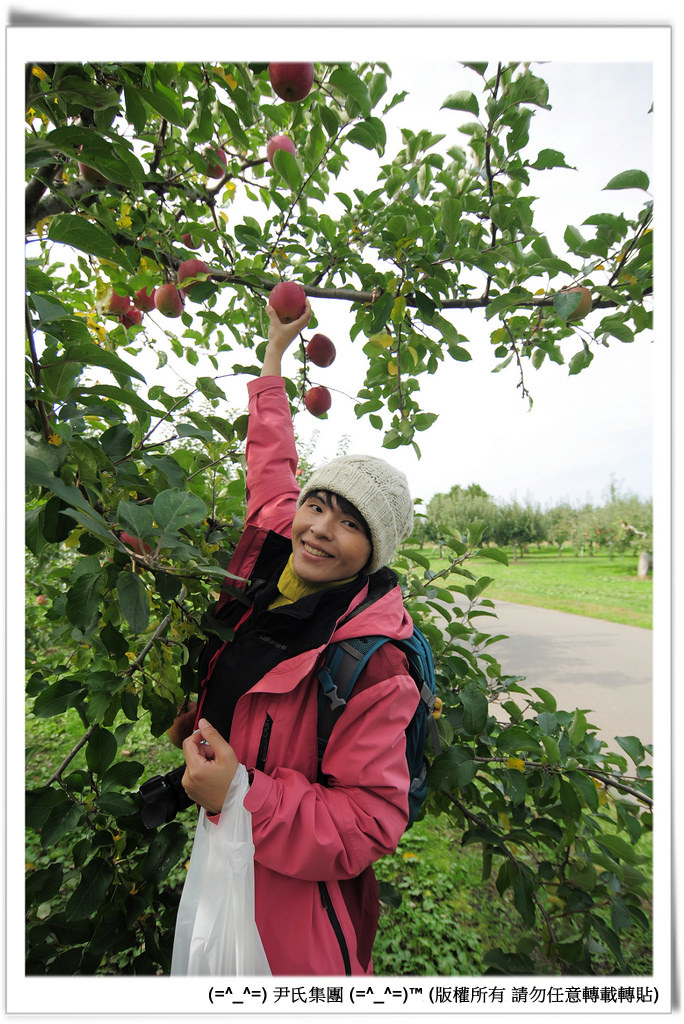 りんご-036