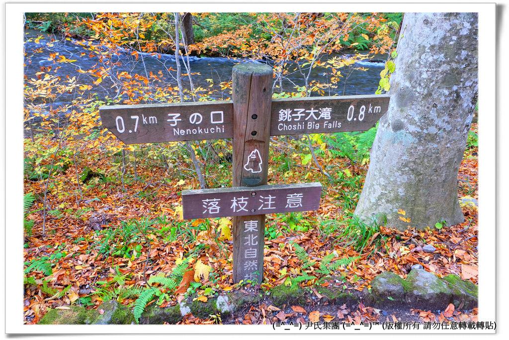 銚子大滝-020
