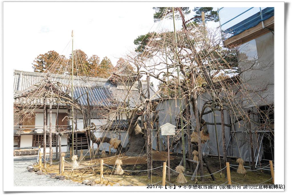瑞巌寺-010