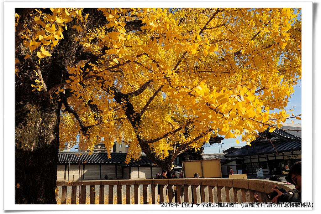 西本願寺-016