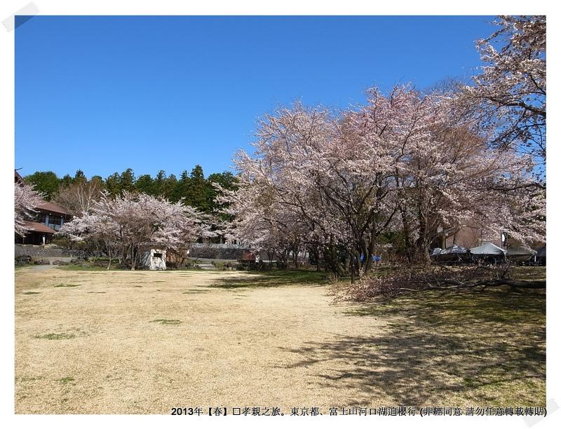 淺間神社012-1