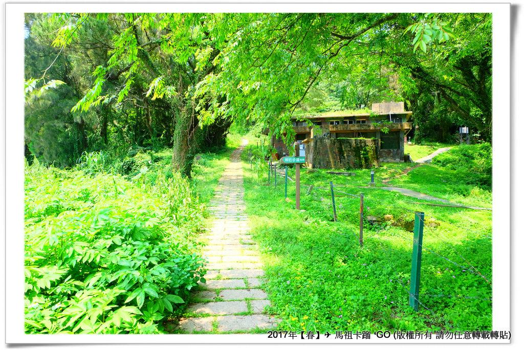 西坵村-021