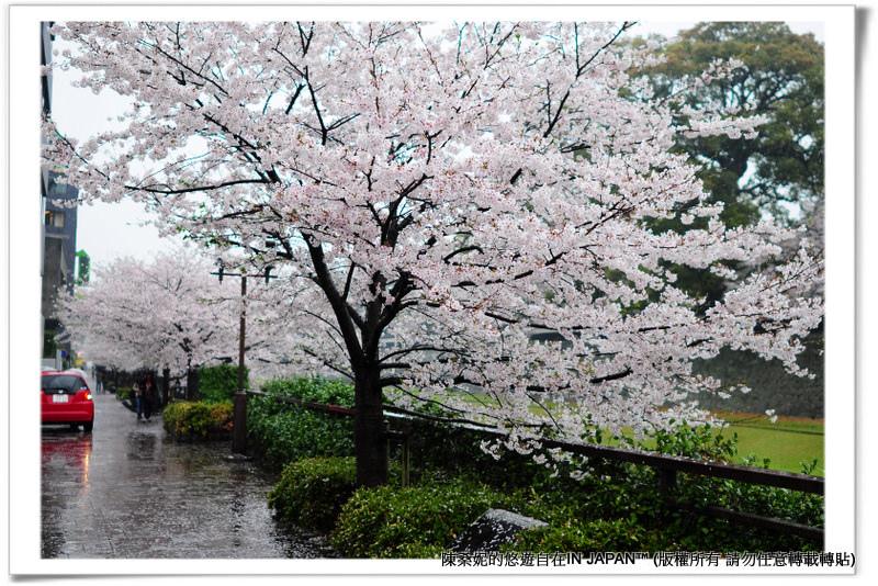 熊本城-001