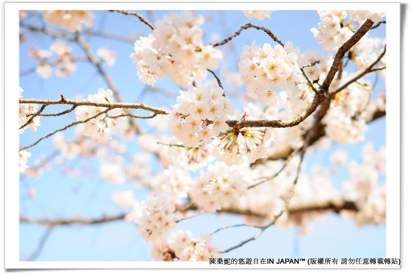 太宰府-025