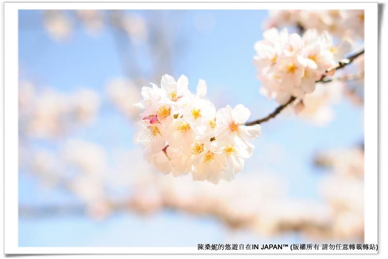 太宰府-026
