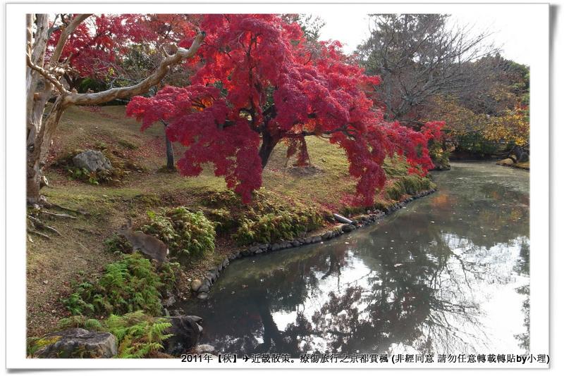 奈良公園002