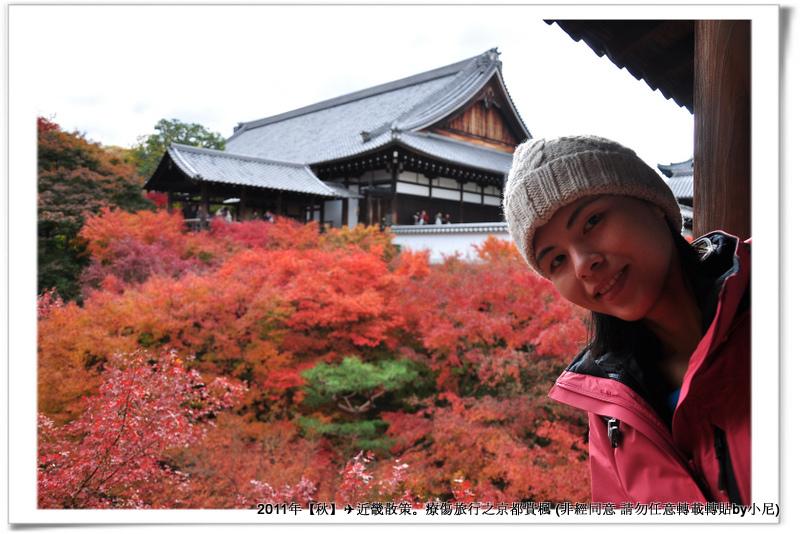 東福寺029