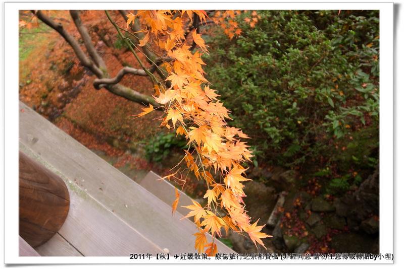東福寺031