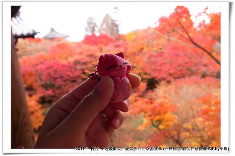 東福寺035
