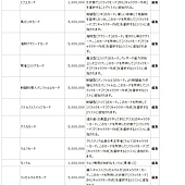 JAPAN FESO SHOP 004