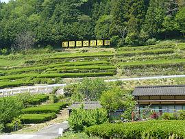 270px-Shirakawatya01.jpg