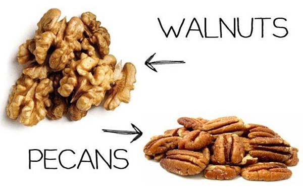 pecans-or-walnuts.jpg