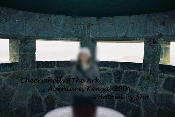 The Ark Photo Hide